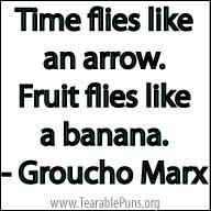 TimeFliesLikeAnArrow