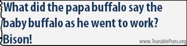 Whatdidthepapabuffalo