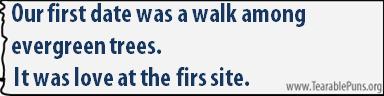 Ourfirstdatewasawalkamongevergreentrees